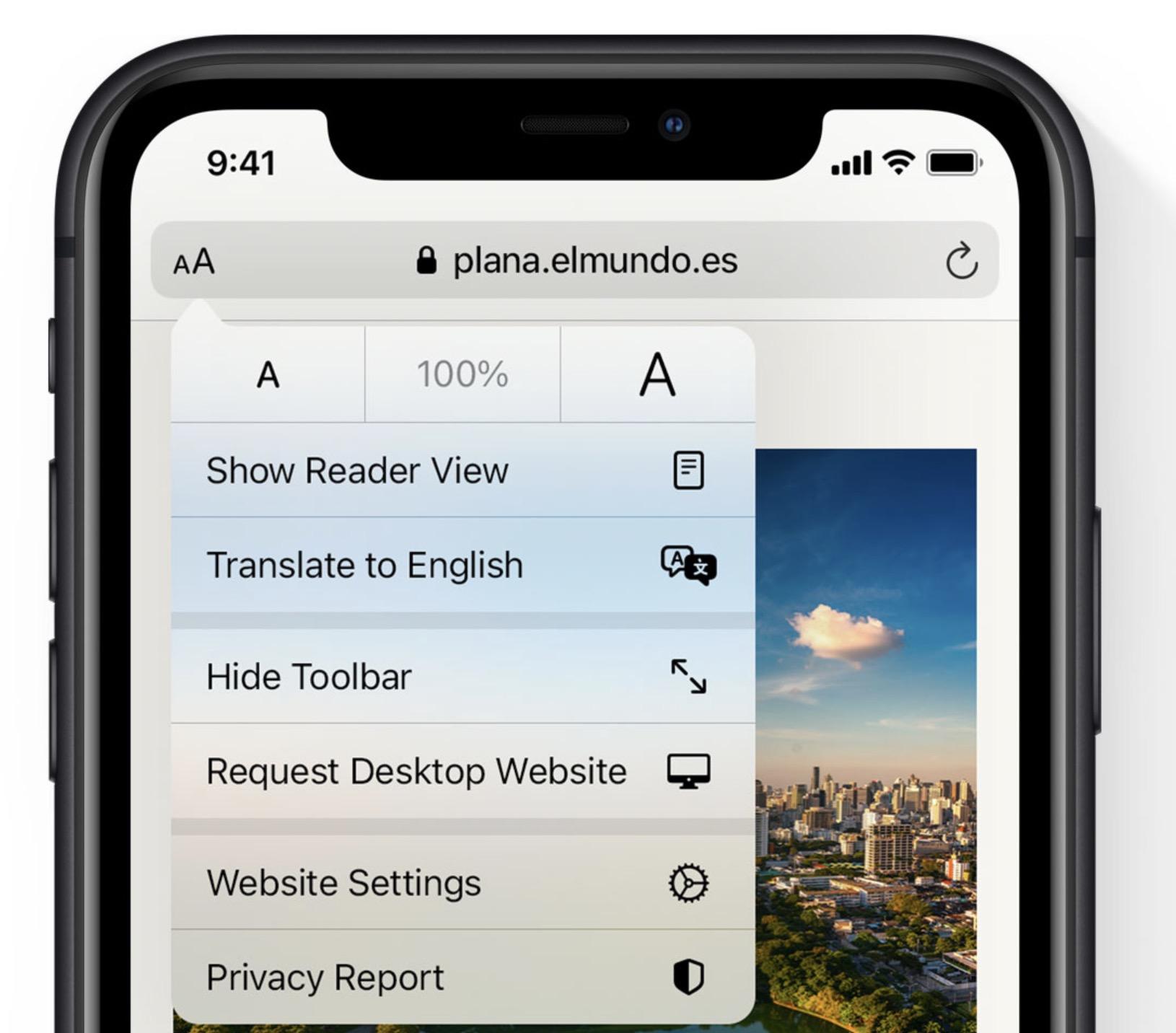 Apple iOS 14 - Safari Translation